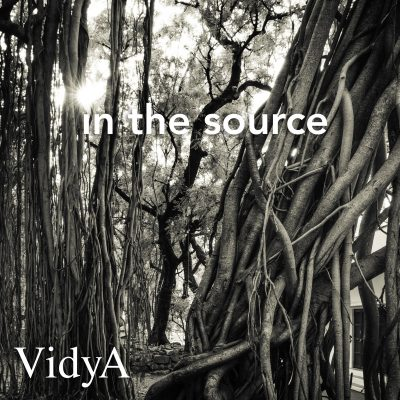 VidyA: In the Source album cover